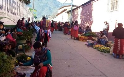 Seeds The new economy in Ixil